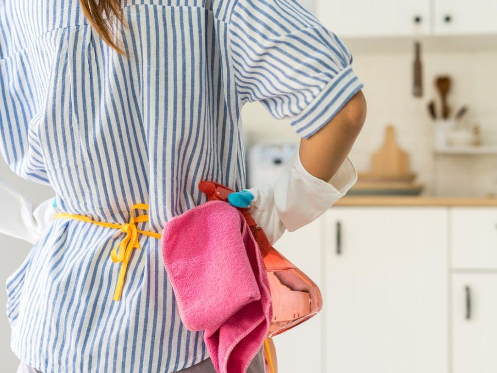 woman ready to clean kitchen with disinfecting wipes